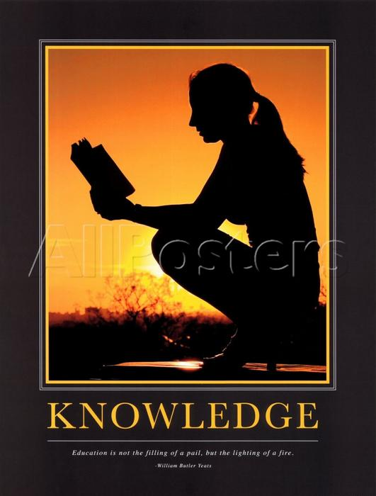 Knowledge Motivational Poster Original