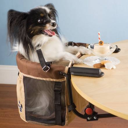 Pet High Chair With Dog In It