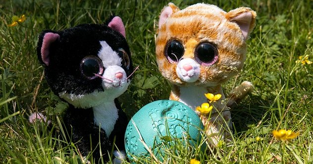 Two Stuffed Cats (Orange and Black) with a green ball