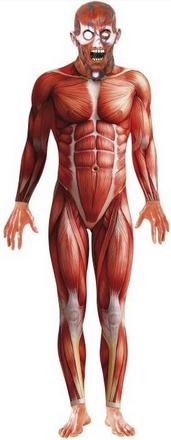 Human Anatomy Costume Small