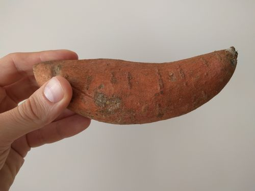 One orange yam